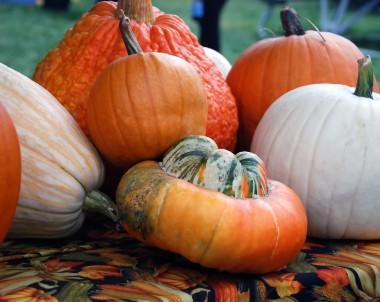 Herbstliche Deko selber machen
