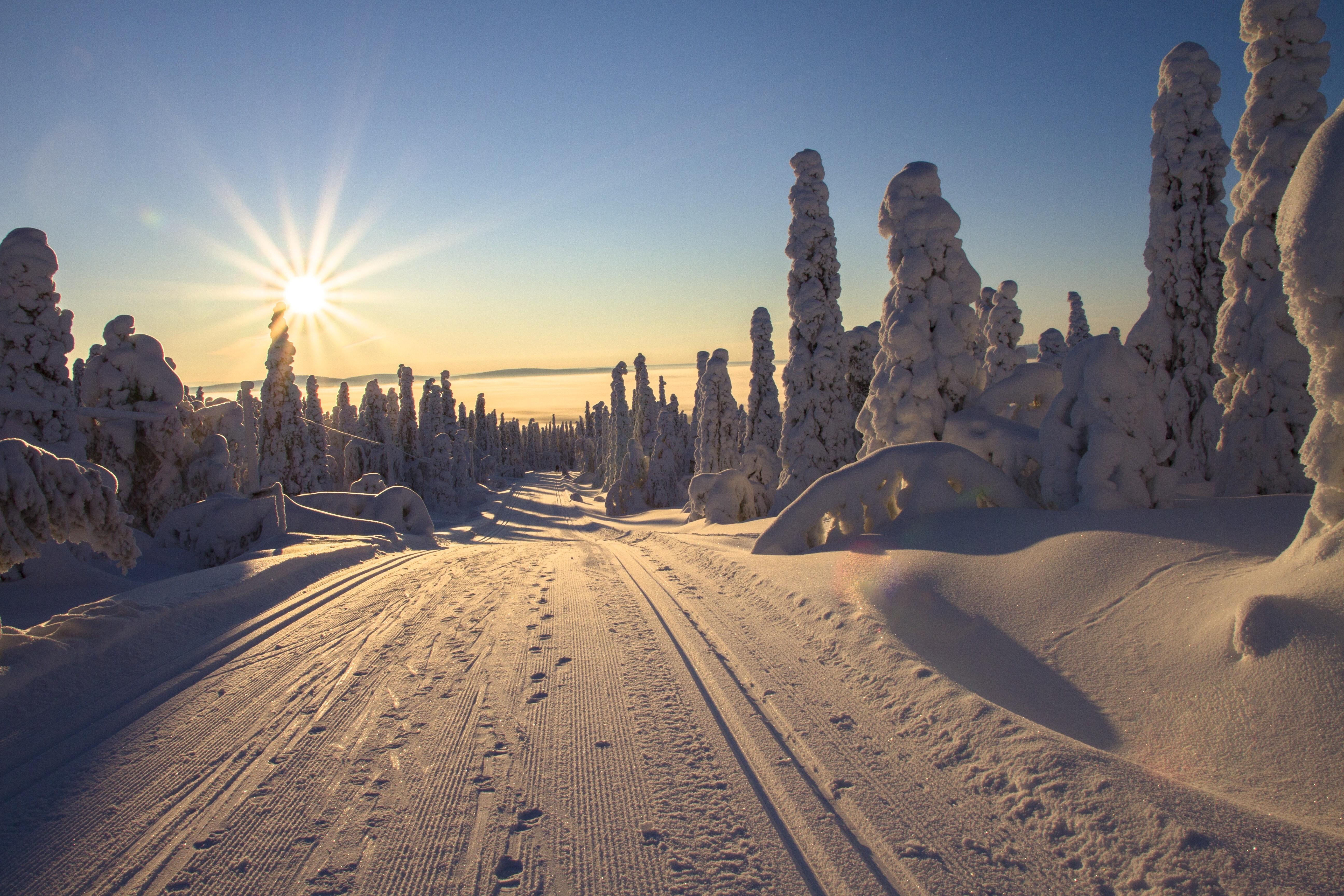 Finnland, Finnland Urlaub, Finnland Reise, Lappland