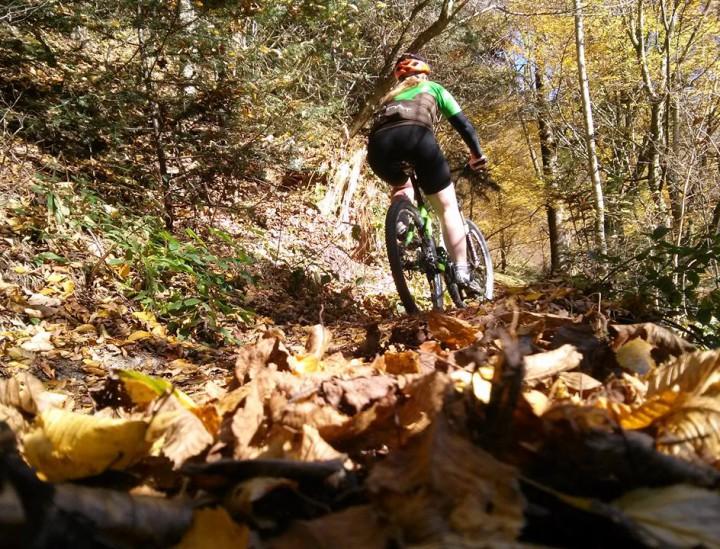 Damen Mountainbike -Bild: Ciclista.net - Carolyn Friesl
