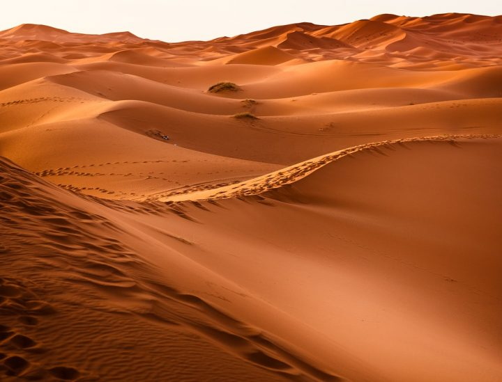 Sahara Wüste -c- jpeter2 Pixaby - Photo