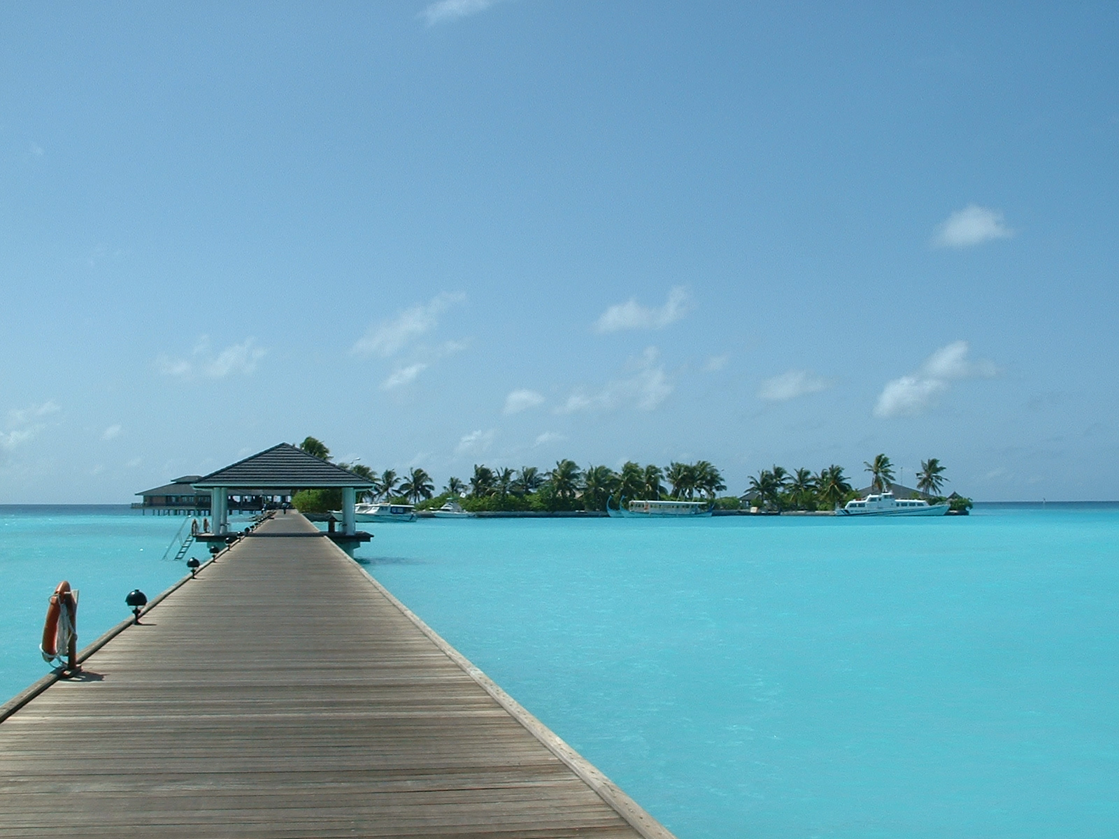 Sun Island Malediven © Henry / freeimages.com