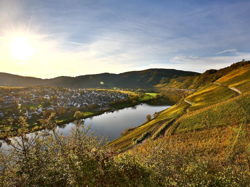 Weinreisen, zum Beispiel zum Moseltal im Herbst © sunset-man / Fotolia.com