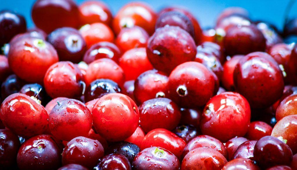 cranberries blasenschwäche, mittel gegen blasenentzüngung, hilfe bei blasenschwäche