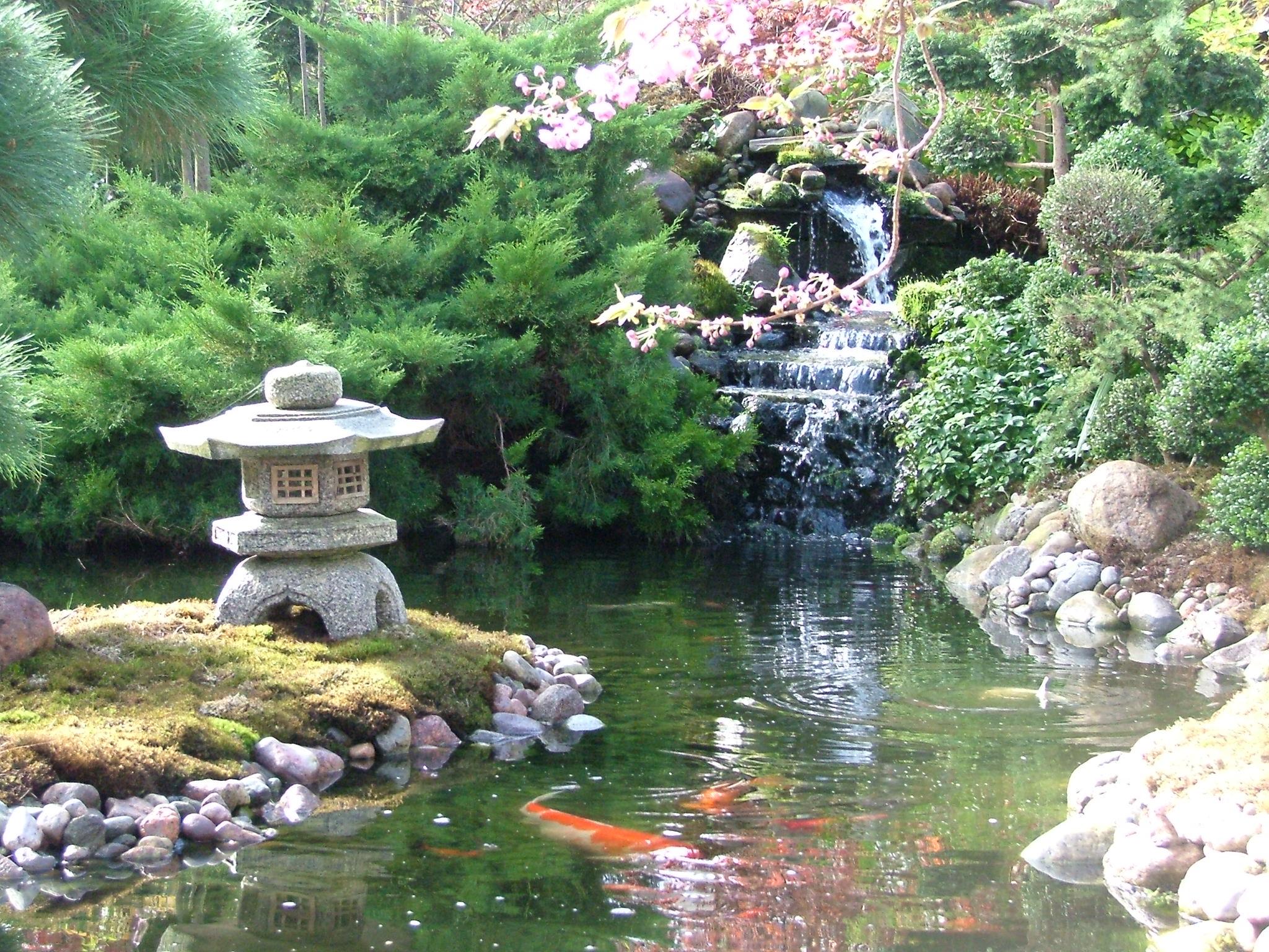 Anleitung japanischen garten selbst gestalten wir kl ren for Garten gestalten mit teich
