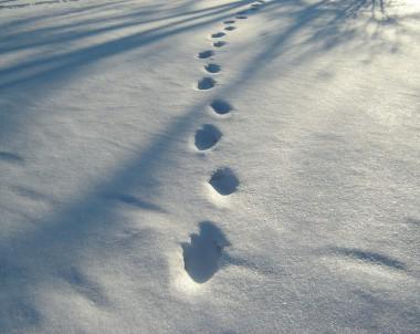 Kurz vor knapp – Das sind die Winterschuh-Trends für Damen